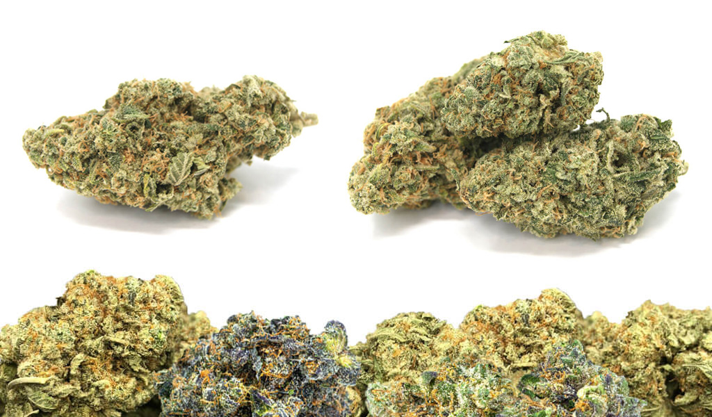 The Best Store To Buy weed online In Canada